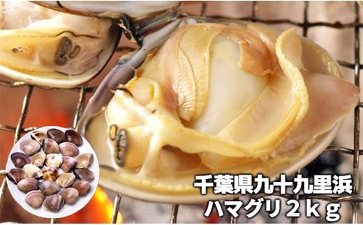 C01-001 完全天然ハマグリ(ボイル)2kg