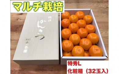[№5745-1329]【マルチ栽培・有田みかん】化粧箱『特秀』Lサイズ32玉入