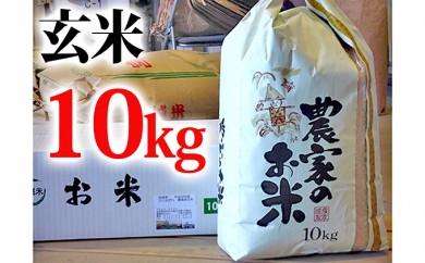 [№5704-0177]【寺島生産組合】 30年度 玄米 宮城県産米 ひとめぼれ 10kg