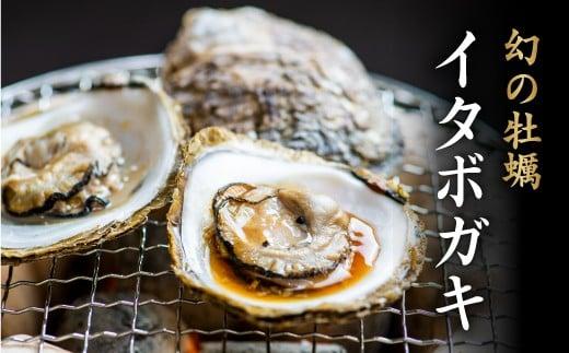 C-09 【超希少】幻の牡蠣イタボガキ Lサイズ15個セット