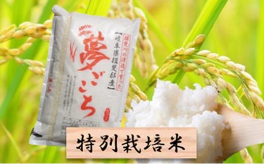 [№5644-0434]特別栽培米★精米10kg(分搗き可)または玄米11kg 【夢ごこち】