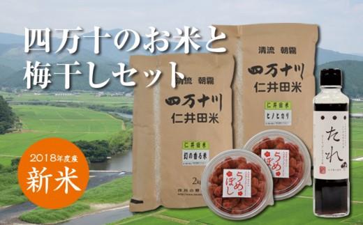 Bti-06 【新米をお届け!】四万十のお米と梅干しセット