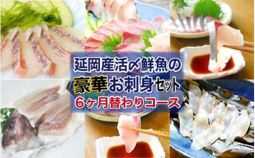Q12 延岡産活〆鮮魚の豪華お刺身[6回月替わりコース]