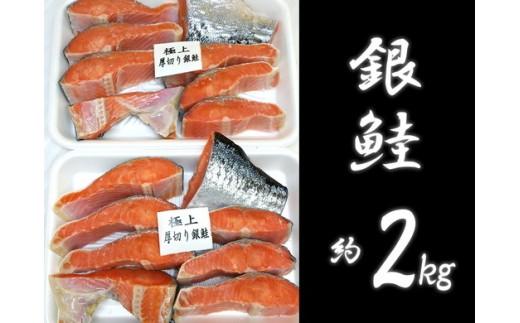 a15-093 びっくり!銀鮭!約2kg