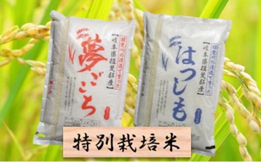 [№5644-0445]特別栽培米★精米20kg(分搗き可)または玄米22kg 【夢ごこち・ハツシモ】