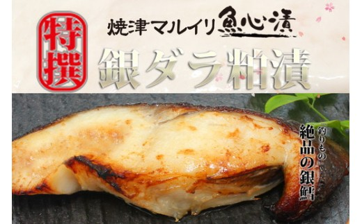a15-239 焼津伝承魚心漬銀ダラ8切