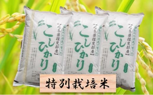 [№5644-0447]特別栽培米★精米30kg(分搗き可)または玄米33kg 【コシヒカリ】