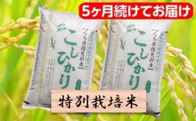 [№5644-0465]特別栽培米★[頒布会] 5カ月★毎月 精米20kg または玄米22kg 【コシヒカリ】