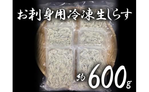 a07-117 静岡県漁連 お刺身用 冷凍生しらす(静岡県産)