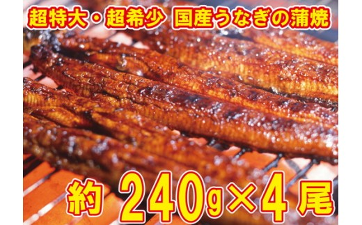 a80-002 うなぎの蒲焼き 超特大サイズ4尾(約240g×4尾)