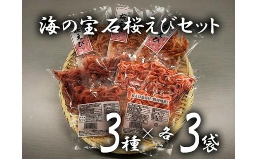 a10-208 静岡県漁連 海の宝石桜えびセット