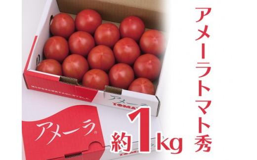 a10-205 アメーラトマト