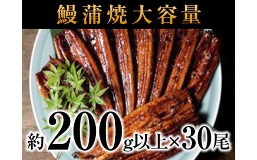 b25-001 国産深蒸し鰻蒲焼大容量