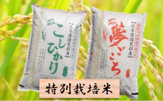 [№5644-0441]特別栽培米★精米20kg(分搗き可)または玄米22kg 【コシヒカリ・夢ごこち】