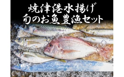 a80-020 焼津港水揚げ 旬のお魚豊漁セット