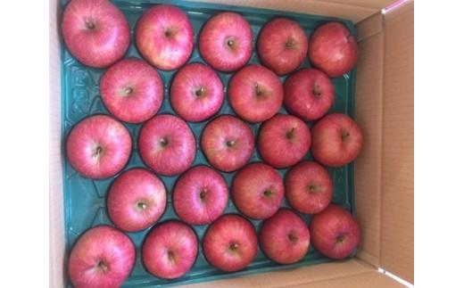 FY18-036 山形産 こうとくりんご 約5㎏ 14~23個