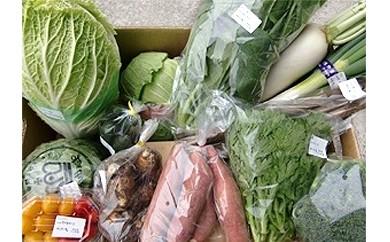 大山町産季節の野菜セット