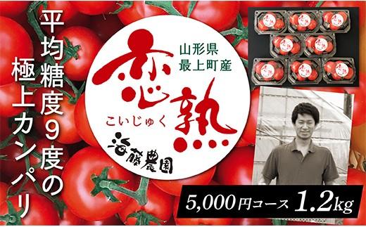 005-014 恋熟トマト1.2㎏(パック詰め)