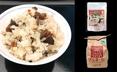 特別栽培米こしひかりとさざえご飯の素セット