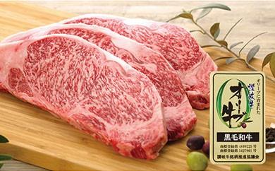 【敬老の日ギフト】【贅沢】オリーブ牛<ロース ステーキ3枚>1kg