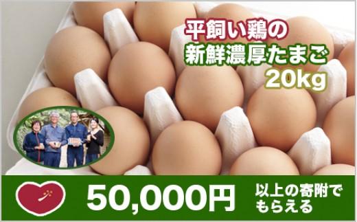 平飼い鶏の新鮮卵 20kg