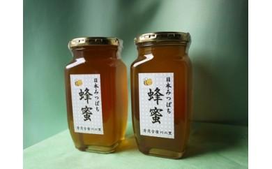 【敬老の日ギフト】日本蜜蜂のハチミツAセット