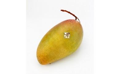 あったか温果mango マンゴー 06 金煌ーきんこうー