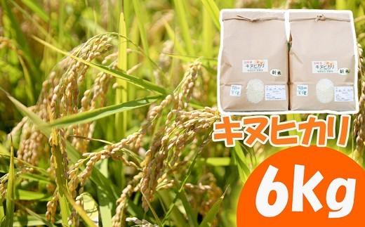 K05-2 キヌヒカリ 6kg