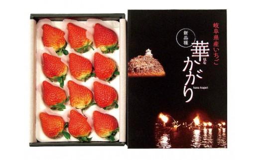58E012 岐阜県産いちご華かがり【約300g×2箱】