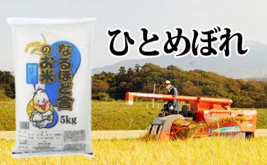 [№5685-1039]新米!秋田県産ひとめぼれ白米10kg(5kg×2)