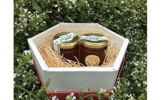 GJ-03 無農薬ハーブ園から採取した超希少な日本ミツバチの蜂蜜