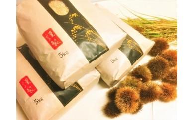 ◆【2018年産・新米予約】 契約栽培 近江米 コシヒカリ 5kg× 3袋 精米済