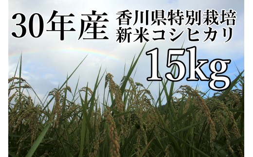 A-115  「平成 30 年産 香川県特別栽培米 コシヒカリ」15㎏!!( 限定100セット)