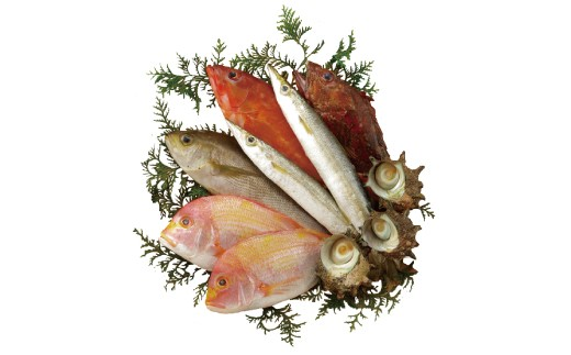 宇久島沖で獲れた鮮魚を下処理してお届けいたします