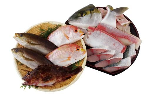 五島近海の味わい深い天然魚をぜひお召上がりください!
