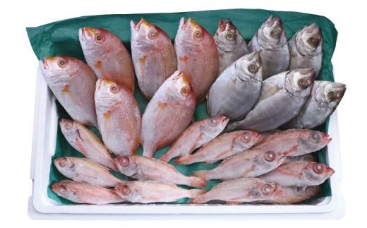 自社の船が日帰りで持ち帰った鮮魚を、そのまま調理しています