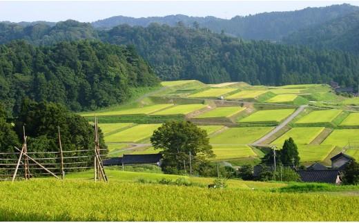 神子原地区の棚田の風景