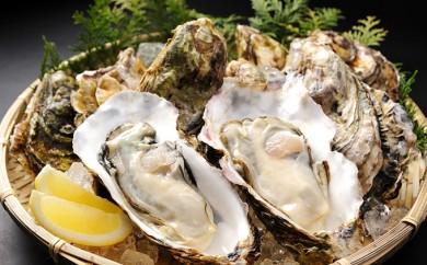 [№5735-0417]瀬戸内の牡蠣(殻つき 3kg)