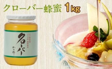 DJ21 クローバー蜂蜜【CC1kg】