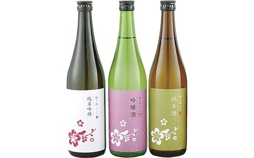 T113 純米吟醸・吟醸・純米酒 華やか&どっしり辛口日本酒3本セット【400pt】