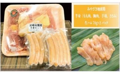 自社養鶏場 宮崎県認定ブランド!みやざき地頭鶏美味しさチョイス 半身&ギフトセット