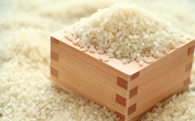 [№5899-0164]平成30年産とよさと コシヒカリ(無洗米)