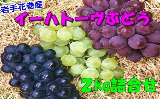 【292】 岩手花巻産イーハトーヴぶどう詰合せ2kgセット(期間限定)