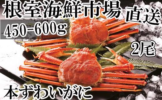 CA-60042 根室海鮮市場<直送>本ずわいがに姿450~600g×2尾