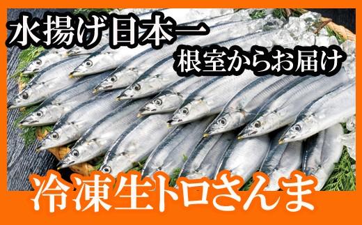 CC-34014 【北海道根室産】さんま40尾
