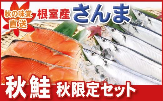 CA-07027 【北海道根室産】秋鮭・さんまのセット(秋限定)