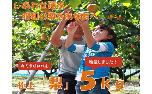 [№5756-0041]梨(新高他)5.0kg(南大島梨栽培研究クラブ)