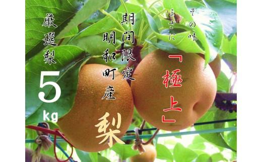 [№5756-0038]梨(新興)5.0kg
