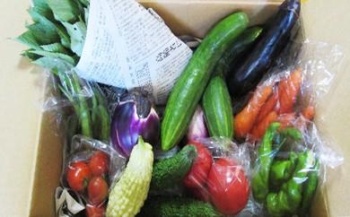 [№5574-0010]【愛川ブランド】自然農法で育てた季節のおまかせ野菜セット