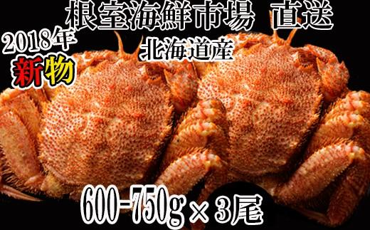 CD-57001 北海道産浜ゆで毛がに750~850g×4尾